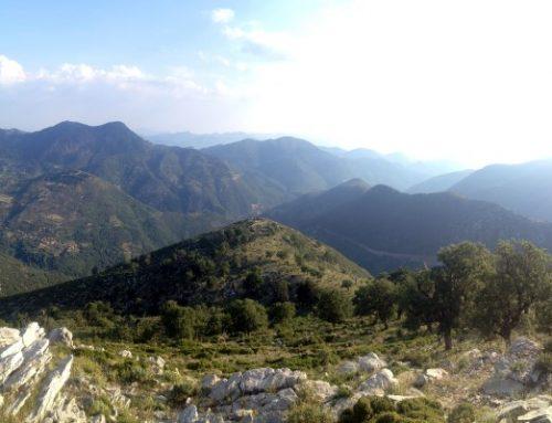 Trail 3 | Abeliona – Agios Sostis – Neda