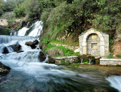 Trail 2 | Abeliona – Neda Springs – Neda