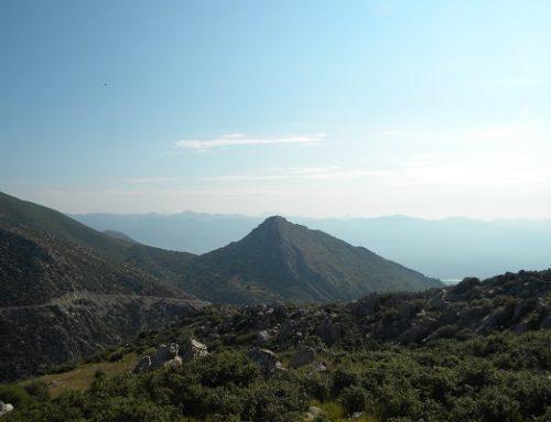 Trail of Rhea | Ano Karyes – Agios Georgios
